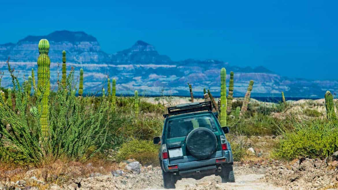 6 Ways to get around in Mexico