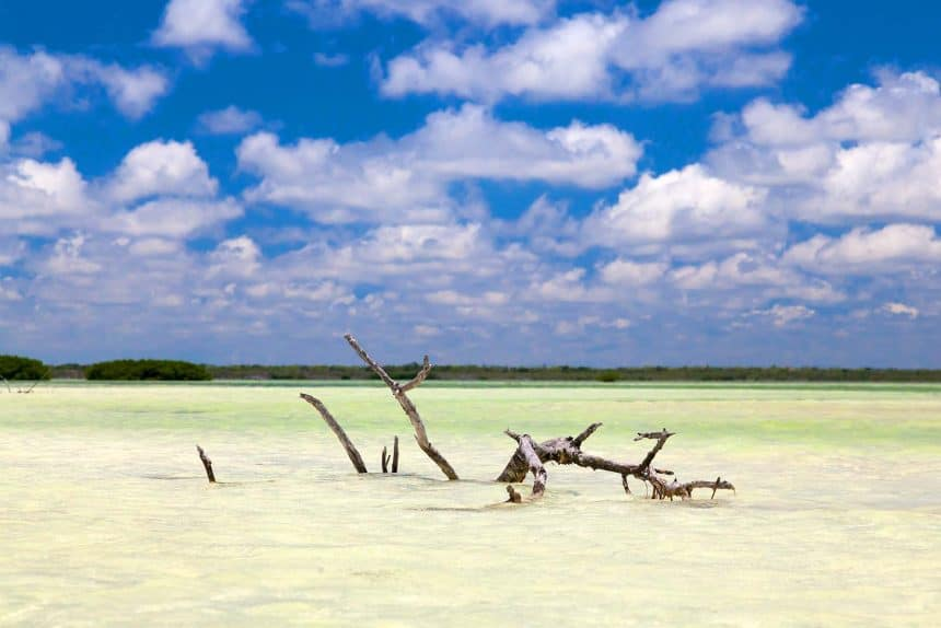 What to do in Cancun, Mexico - A tripto Isla Holbox
