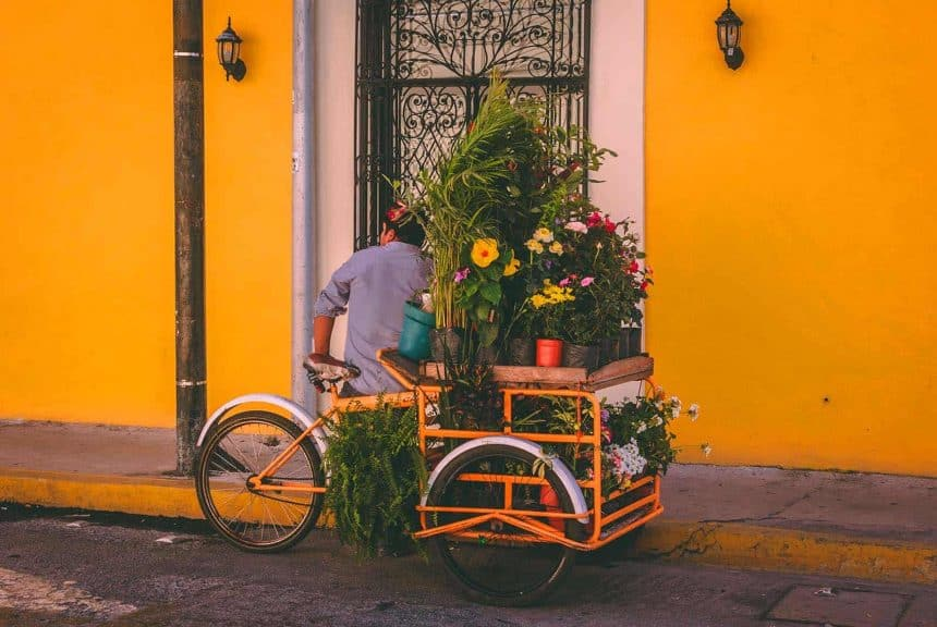 Things to do in Cancun, Mexico - Excursion to Merida, Yucatan