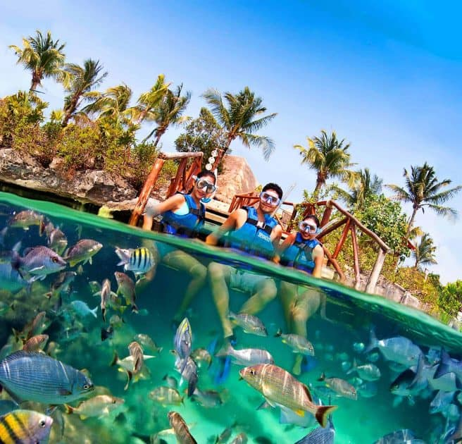 What to do in Cancun, Mexico - Snorkelling in the lagoon of Xel-Há
