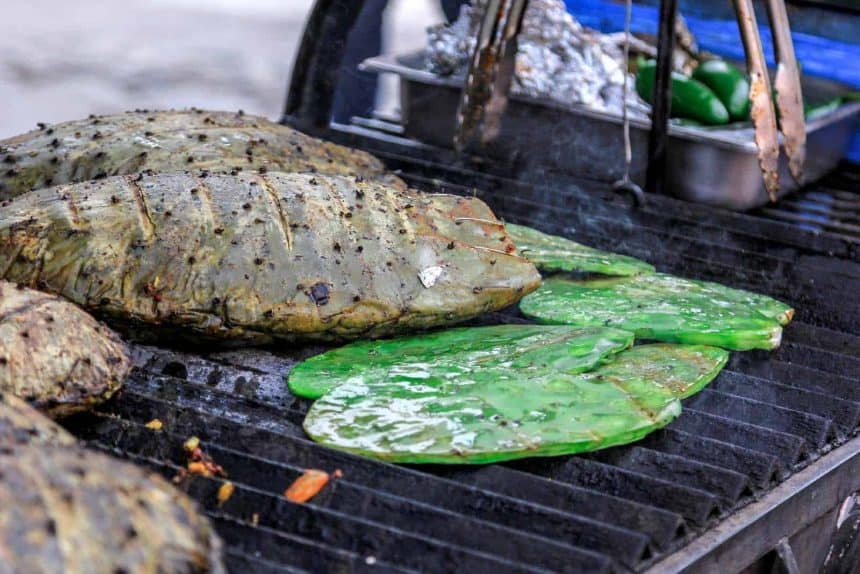 Mexican streetfood: Grilled nopales