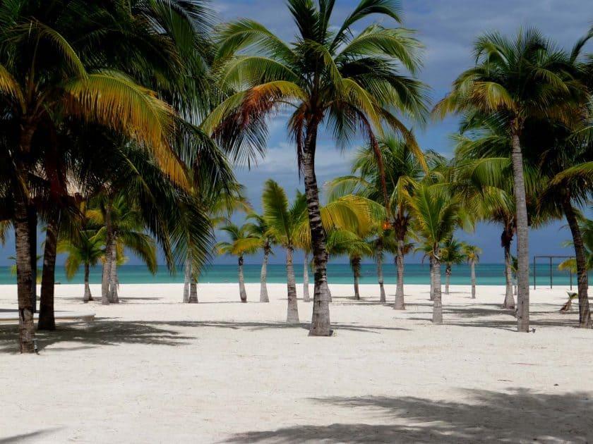 Playas en Cozumel México: Isla de la Pasion