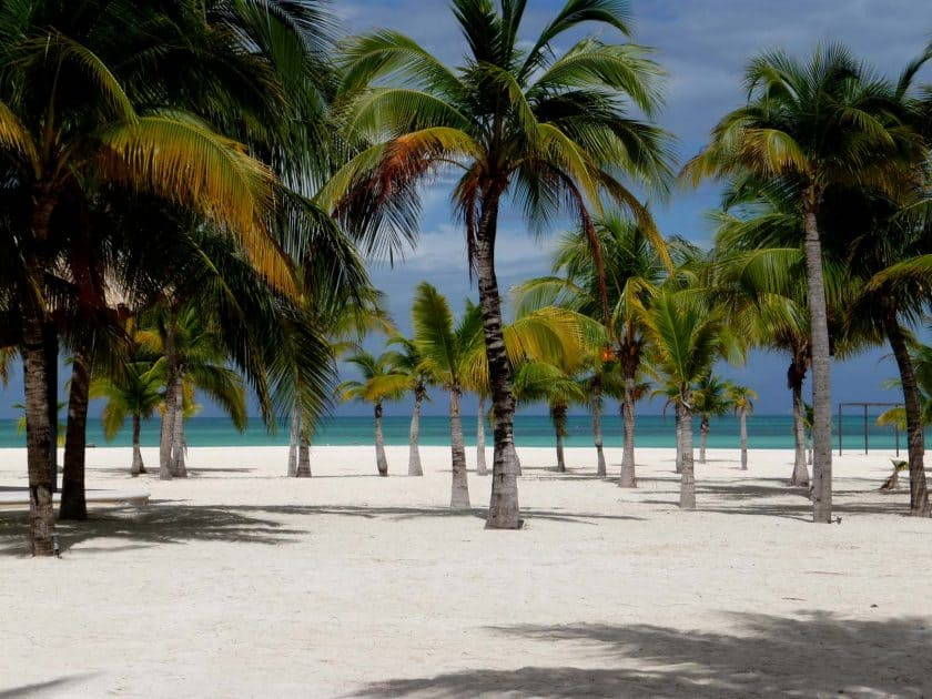 Cozumel Beast Beaches: Isla de la Pasion