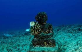 What to do in Cancun Mexco: Visit to the Underwater Museum