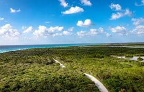 Cozumel Things to do - Excursion to Punta Sur