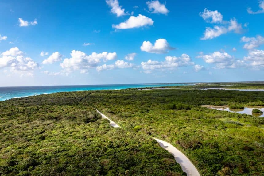 Things to do in Cozumel, Mexico - Excursion to Punta Sur
