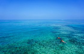 What to do in Akumal, Mexico