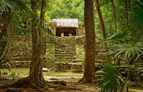 Mayan ruins in Muyil, Mexico