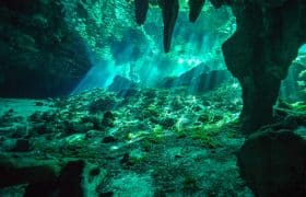 Cave Diving in the cenotes of Yucatan Peninsula, Mexico