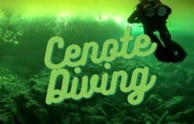 Cenotes Diving EN Pinterest 3
