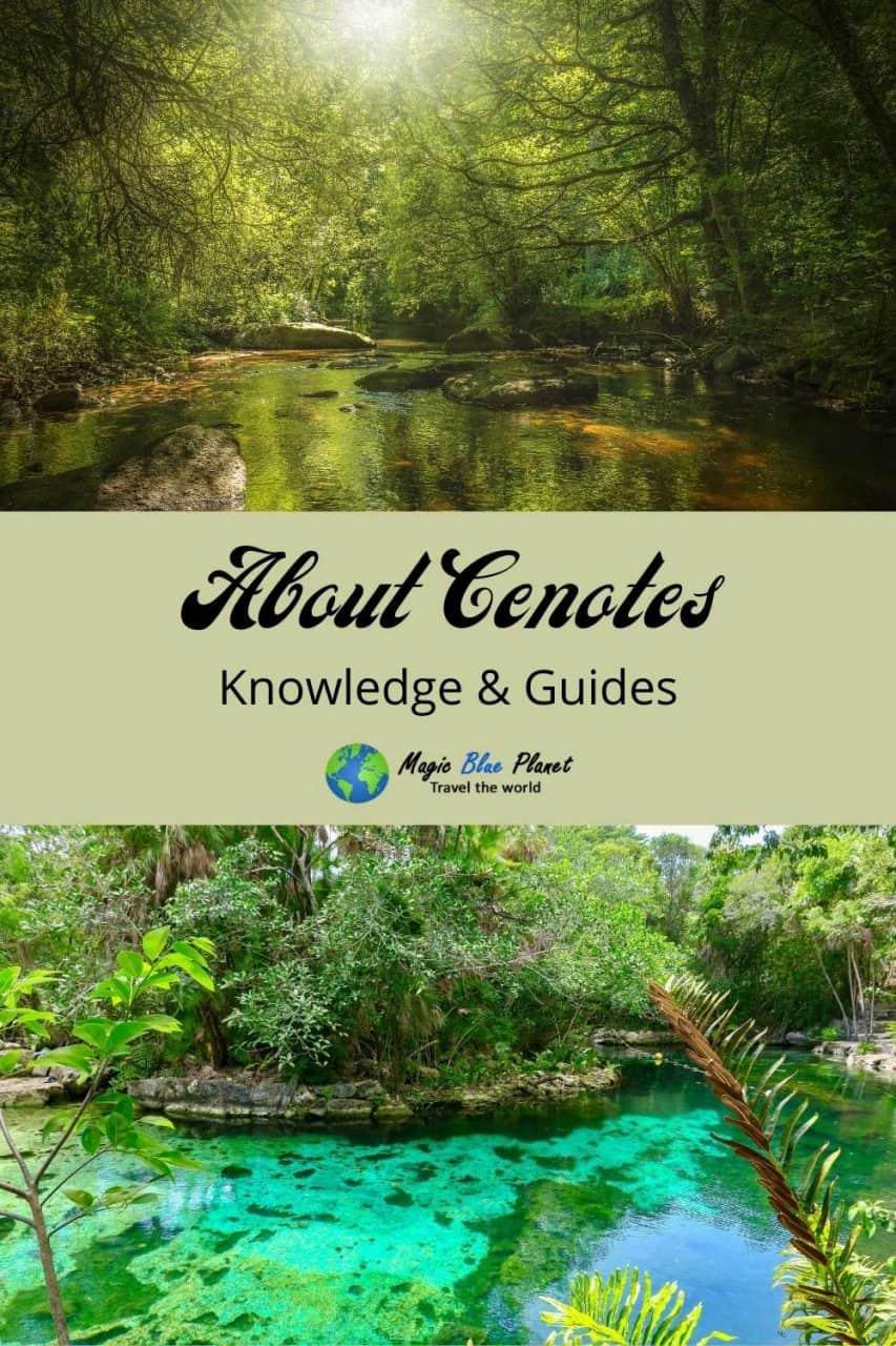 Cenotes About Pinterest 2 EN