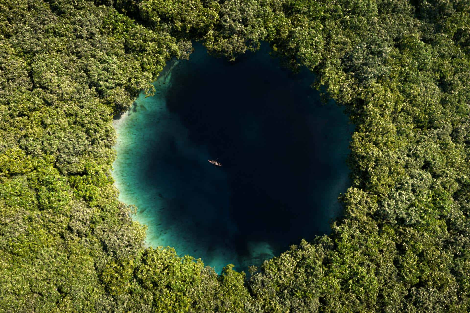 About Cenotes - Facts and Guides